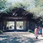 Massai Mara National Reserve